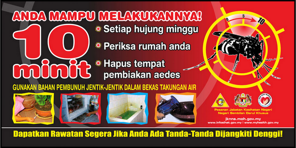 aedes 4