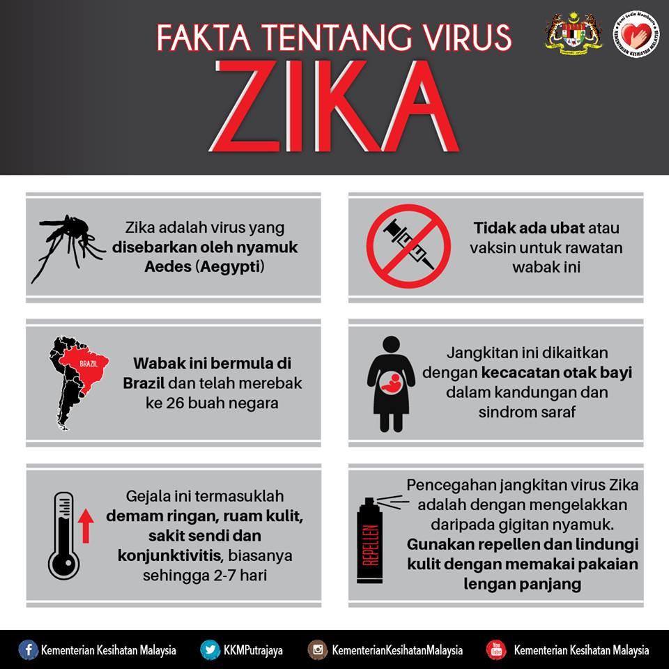 virus_zika_jomvitamin