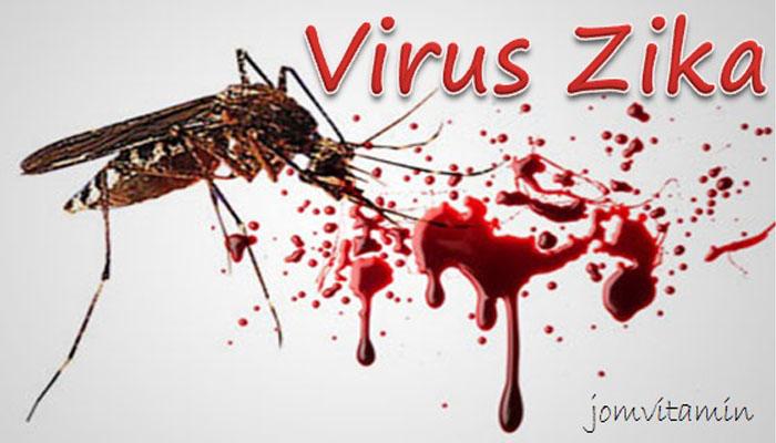 virus zika nyamuk aedis